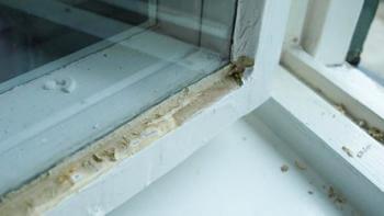 Varnar för asbest i vissa fönsterkitt