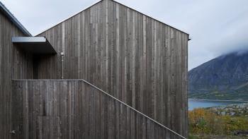 Järnvitriol på fasaden