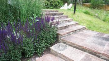 14 steg till en lättskött trädgård