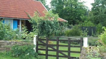 Höst- och vårsysslorna i trädgården