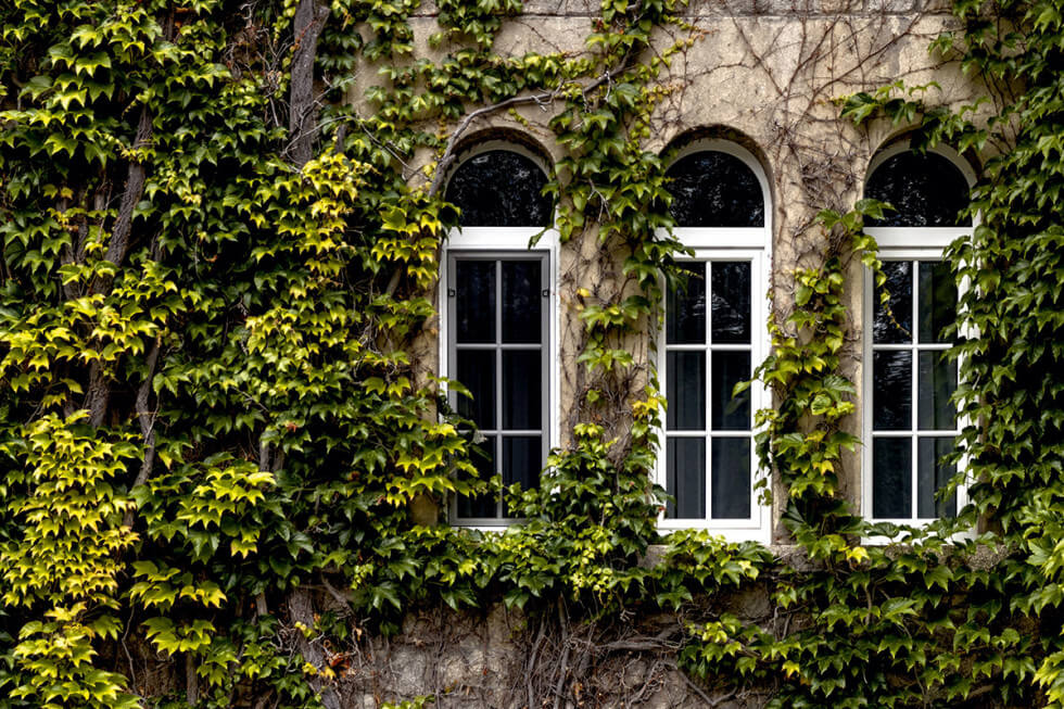 PVC-fönster