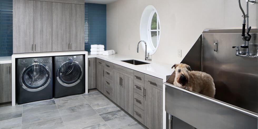 Hundtvättplats i tvättstugan