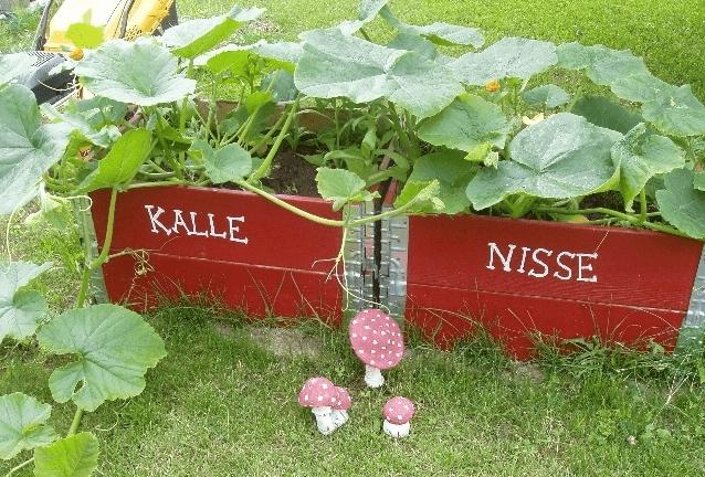 Barnpallkragar