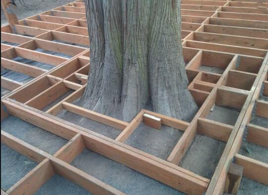 Fäll in träd i trädäcket