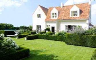 Designad trädgård