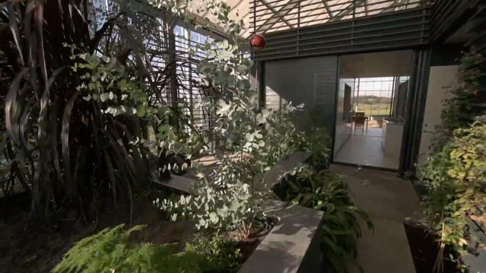 Inuti växthuset
