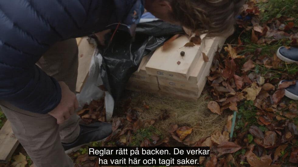Fuskbyggaren använde Ursulas gräsmatta som förråd
