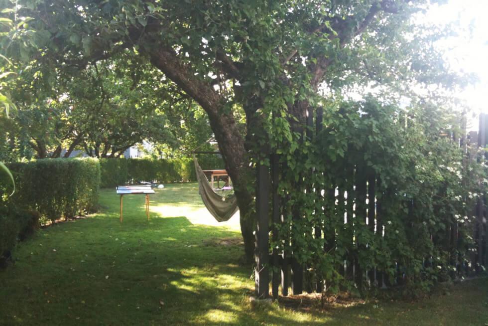 Trädgården klar