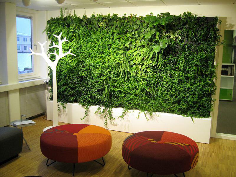 Växtvägg inomhus