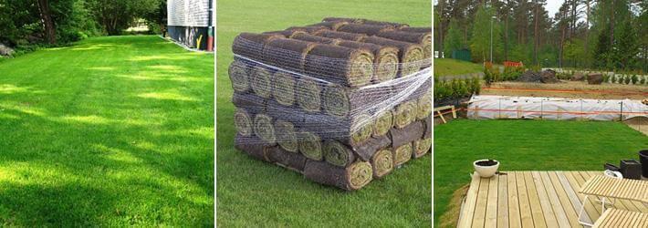 vad kostar färdig gräsmatta